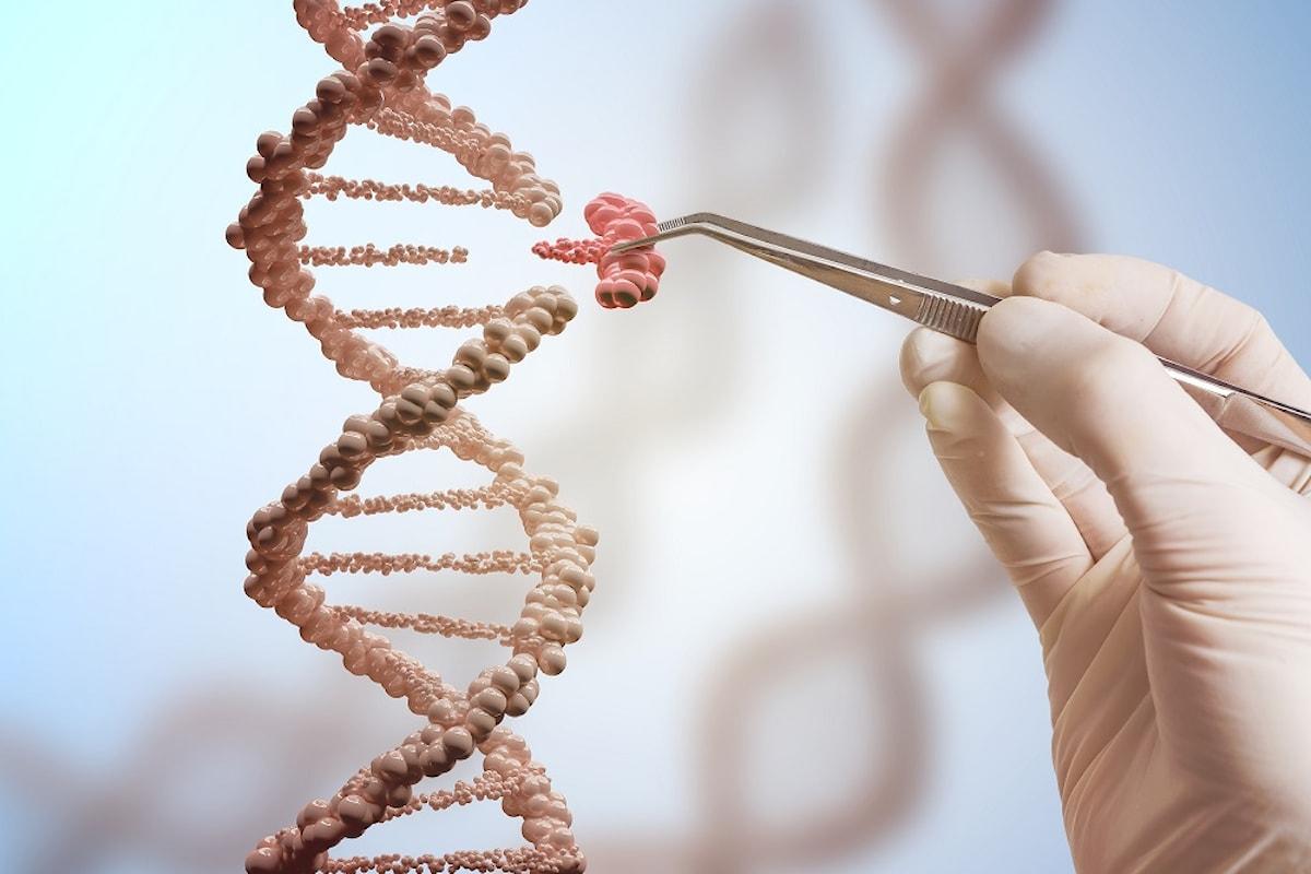 La genetica del cancro: ecco come avviene la nascita di un tumore
