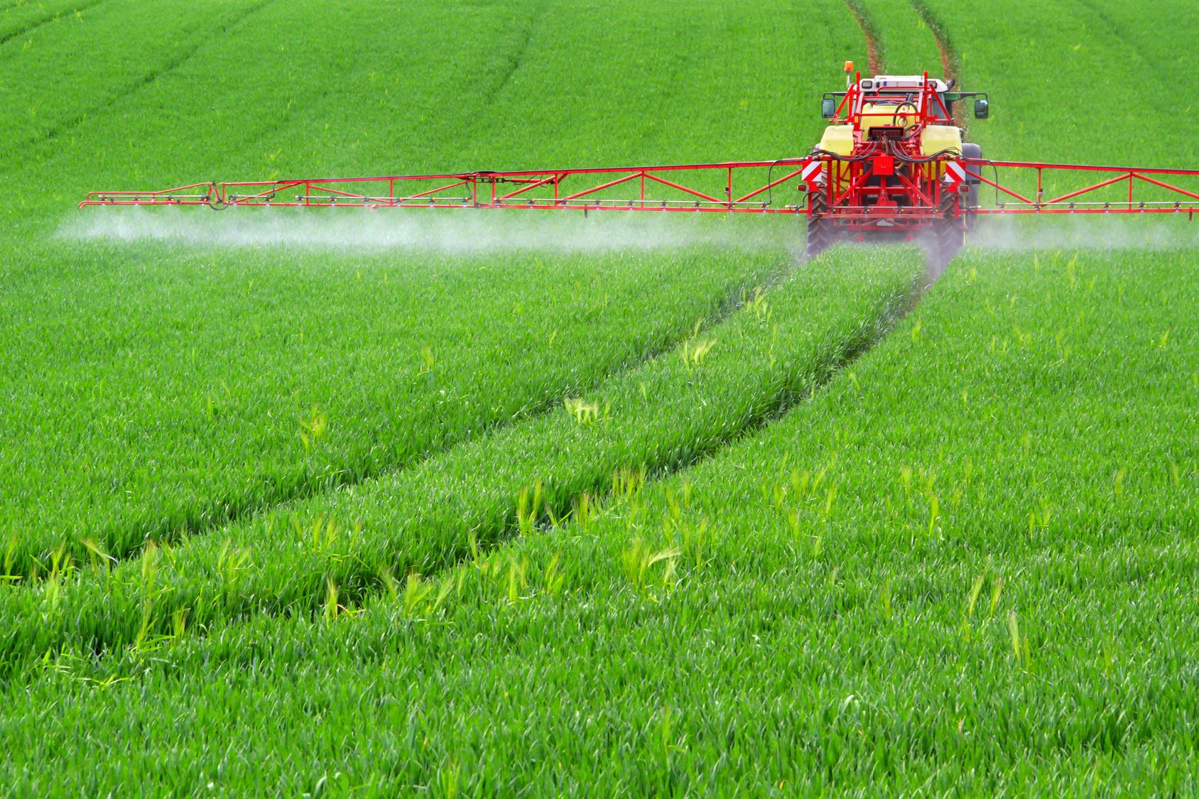Pesticidi nel piatto: ma quante bufale ci raccontano in proposito!