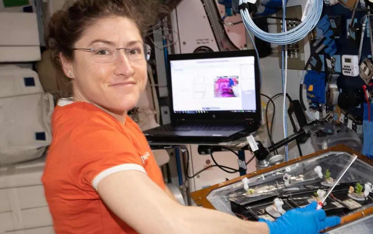 Un'astronauta Usa trascorrerà 11 mesi a bordo della ISS, nuovo record di permanenza nello spazio per una donna