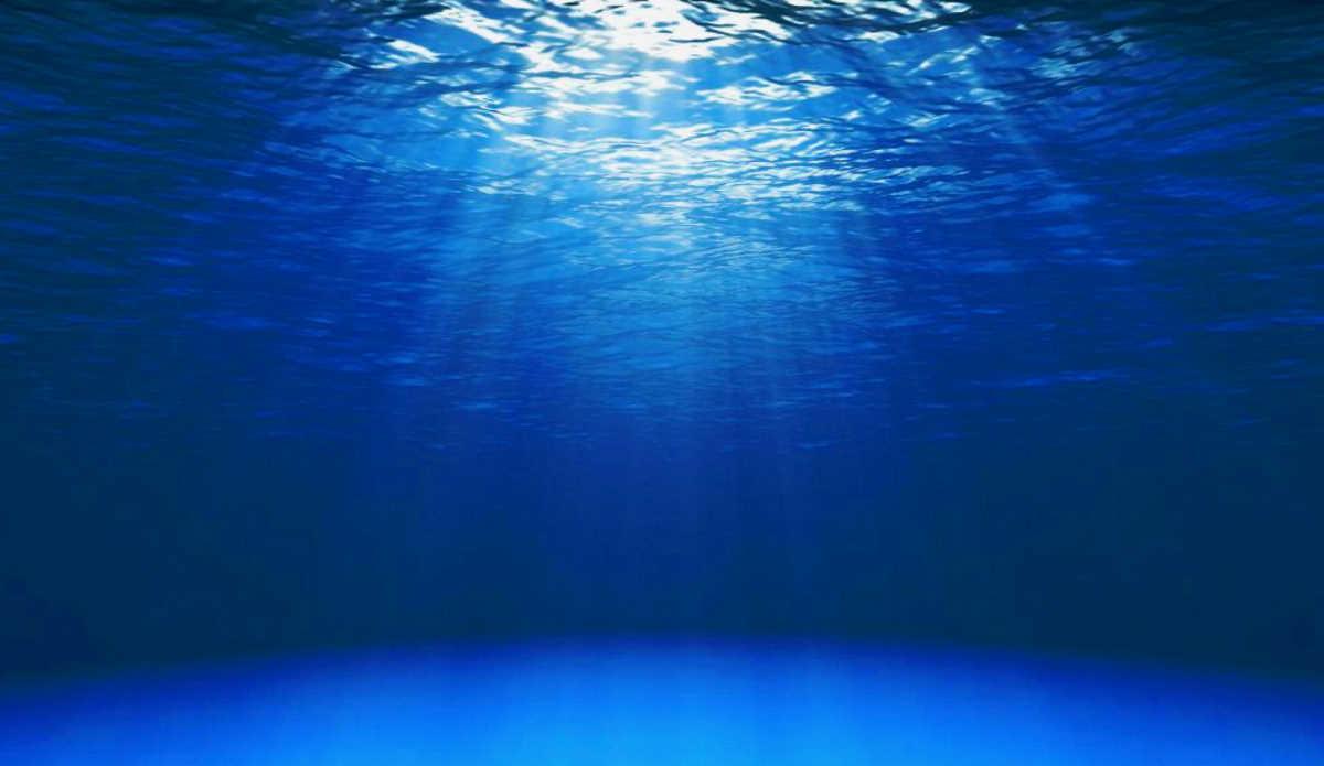 COP25: l'aumento della temperatura causa anche una diminuzione del livello di ossigeno negli oceani