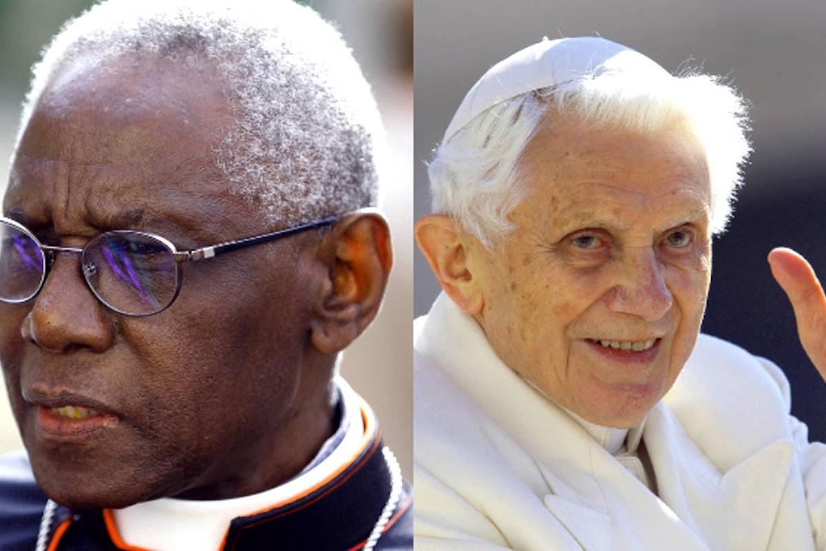 Ratzinger non è un antipapa, la posizione ufficiale del Vaticano sul celibato dei preti