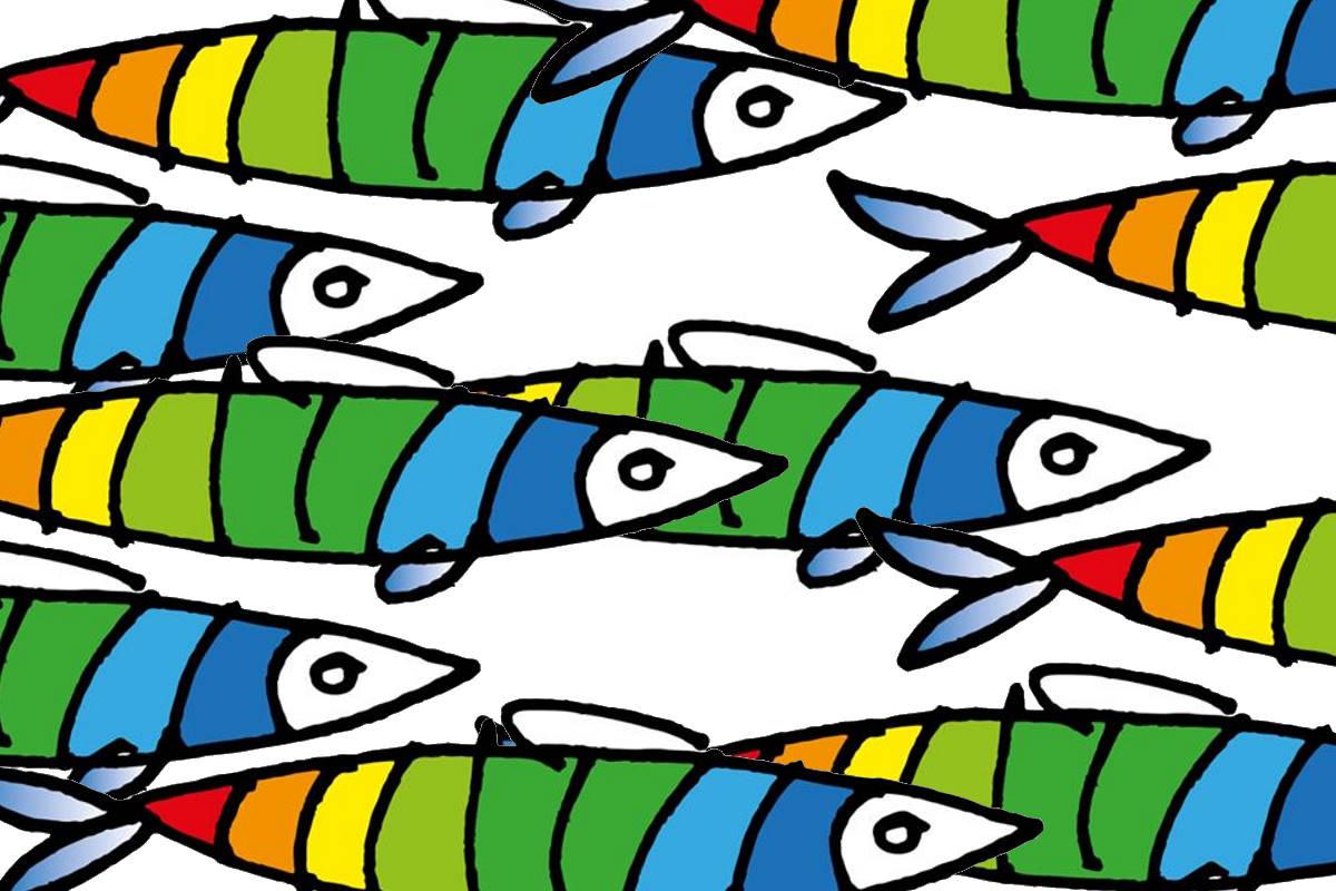 Conte cerca un programma per il suo governo? 6000 sardine accorrono in suo soccorso
