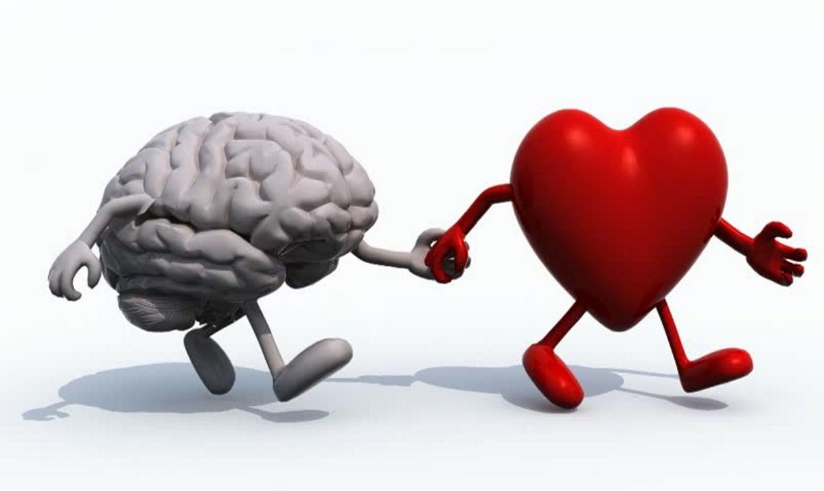 Quando il cuore accende la mente e quando la mente accende il cuore