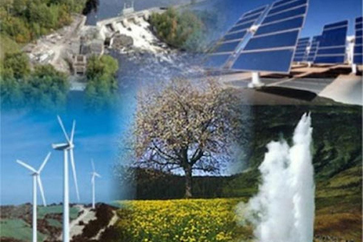 Mercato delle energie rinnovabili, il rally avanza malgrado la pandemia