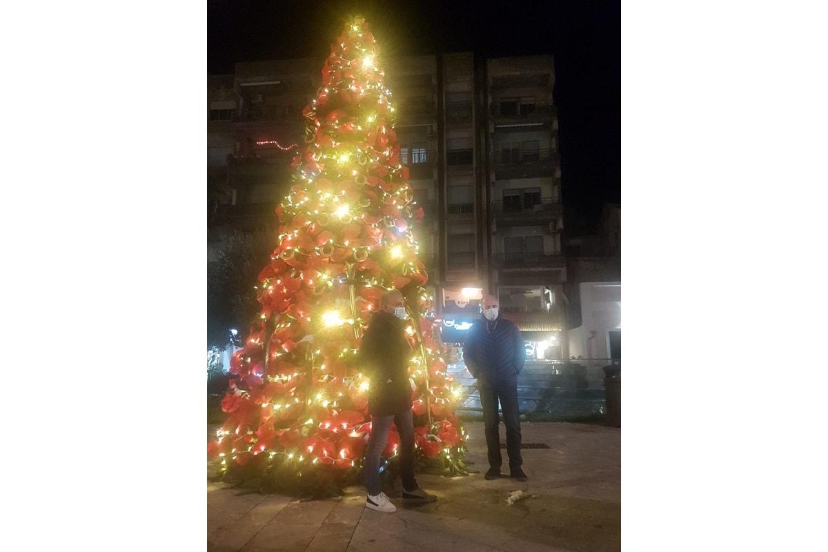 """Milazzo (ME), acceso l'albero in piazza Duomo: comincia il """"Natale degli alberi"""""""