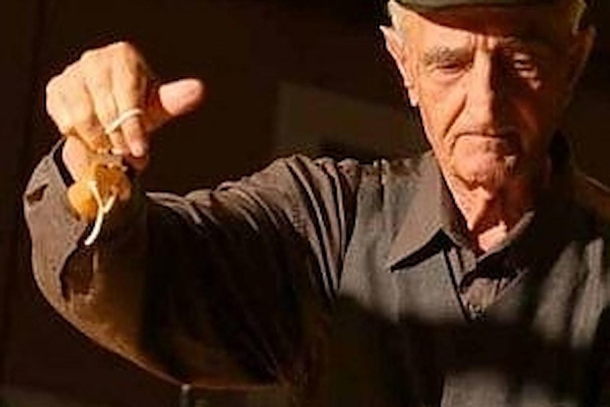 Ricordando il maestro Antonio Piccininno, avrebbe compiuto 101 anni