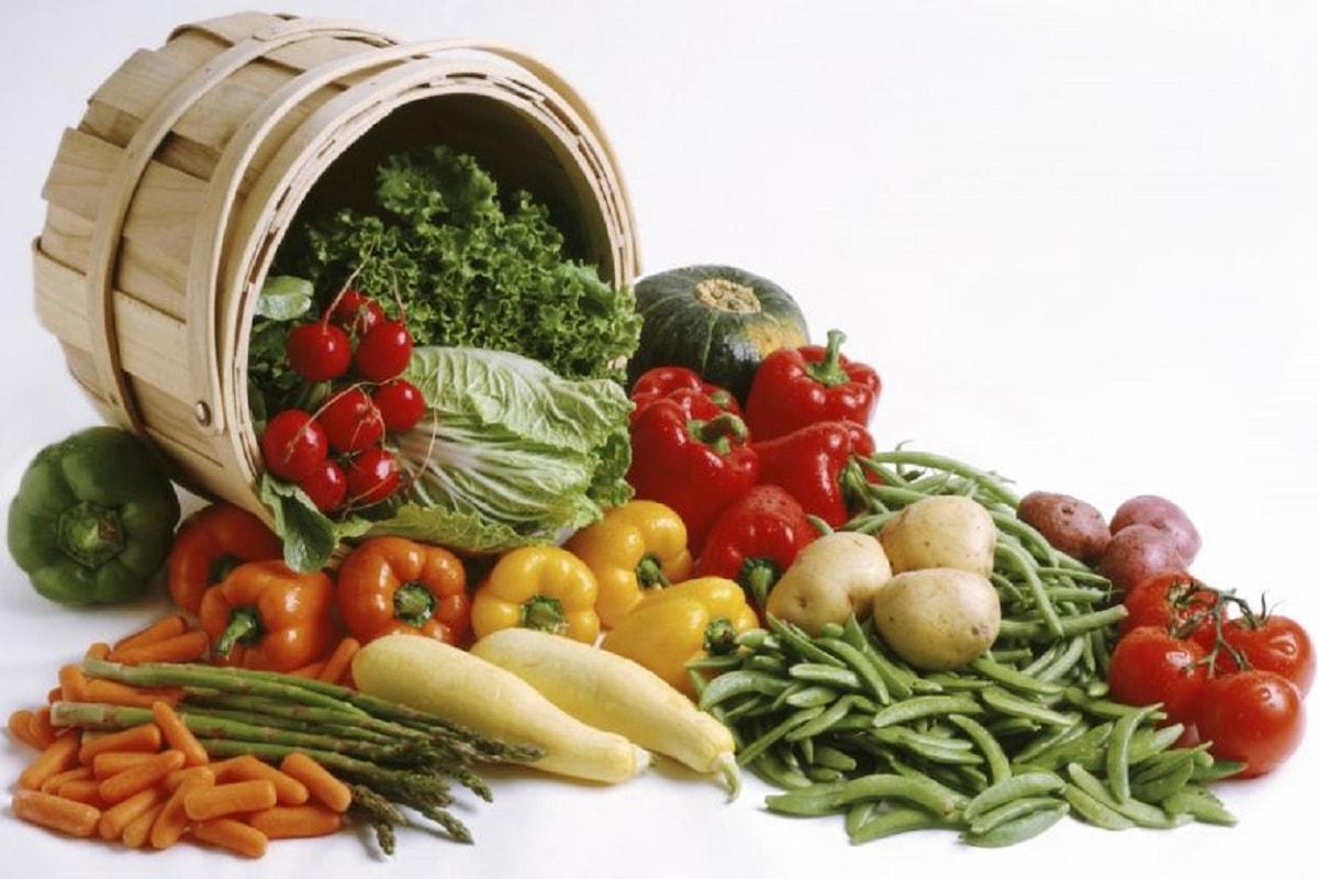 Ricette fresche per una primavera gustosa