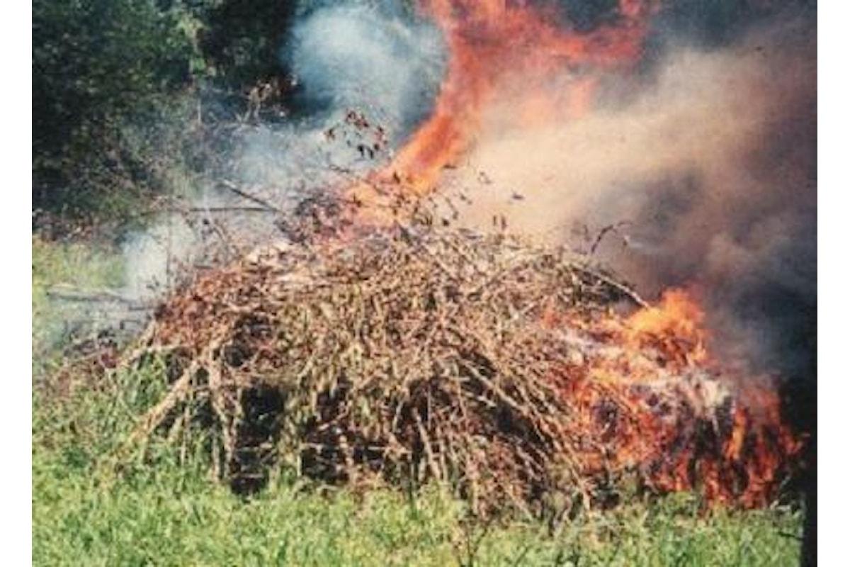 Brucia erbacce e viene avvolto dalle fiamme, contadino salernitano finisce al pronto soccorso