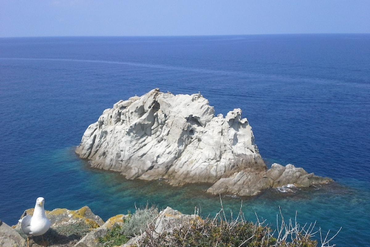 Spiagge dell'Isola d'Elba: escursione in kayak all'Enfola!