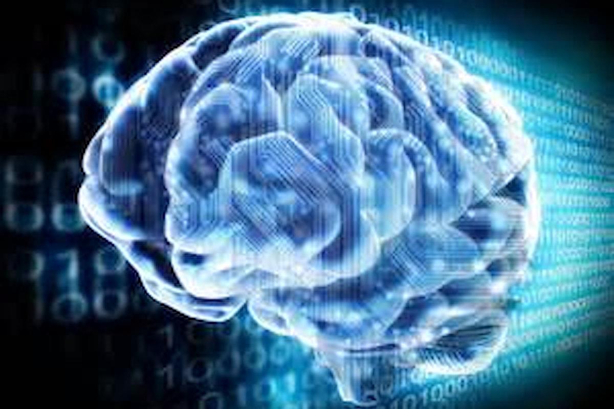 Nuovo progetto Usa per collegare cervello e computer