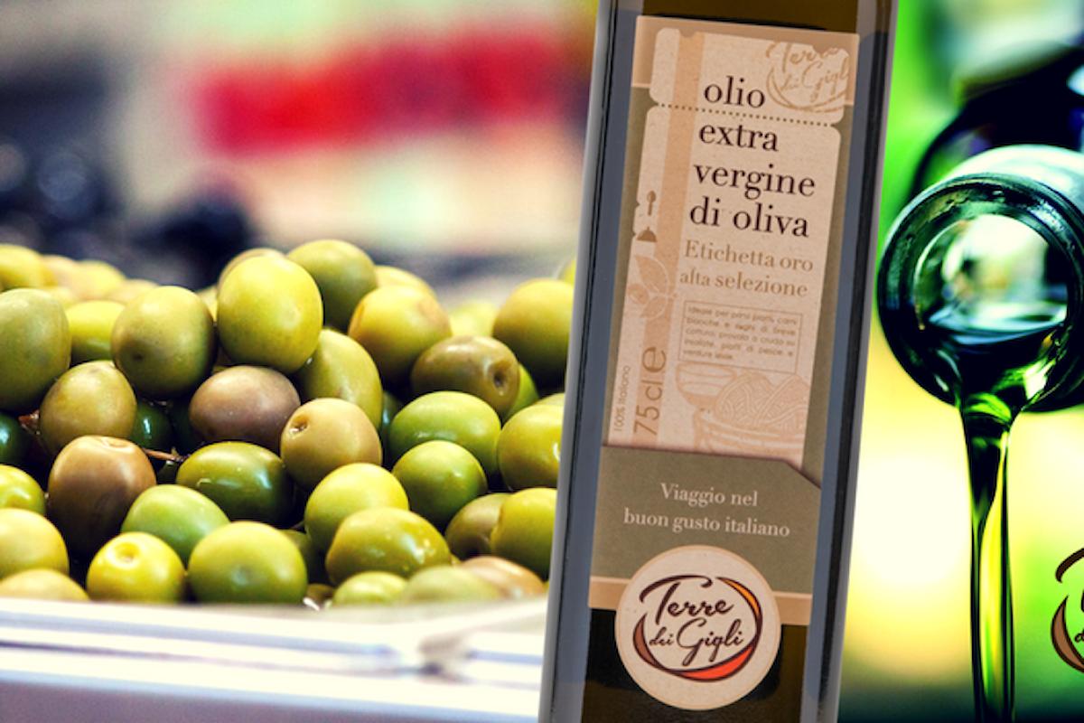 Come si produce l'olio extravergine di oliva