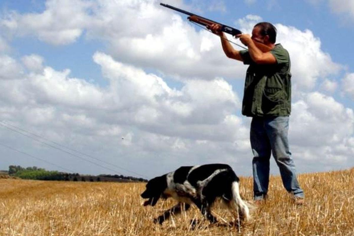 Il WWF si oppone alla preapertura della caccia approvata in ben 14 regioni a partire dal 1 settembre