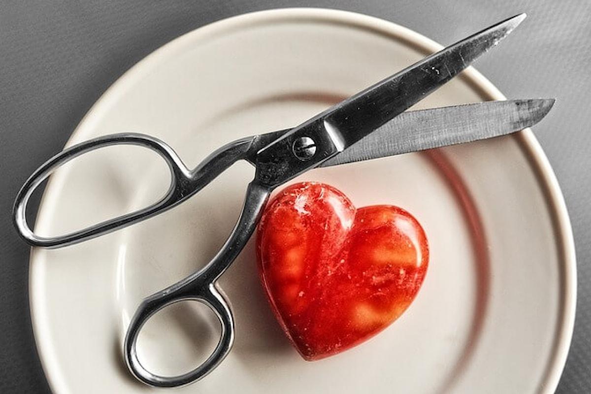 Cos'è il colesterolo e qual è l'alimentazione giusta da seguire per controllarne i livelli nel sangue