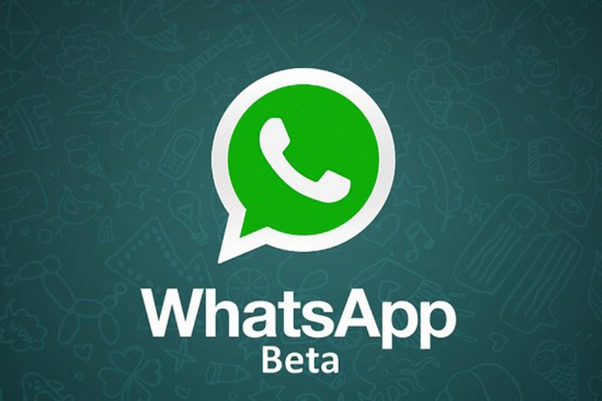 Whatsapp beta: ecco che arriva l'ennessimo aggiornamento disponibile con tante novità   Surface Phone Italia