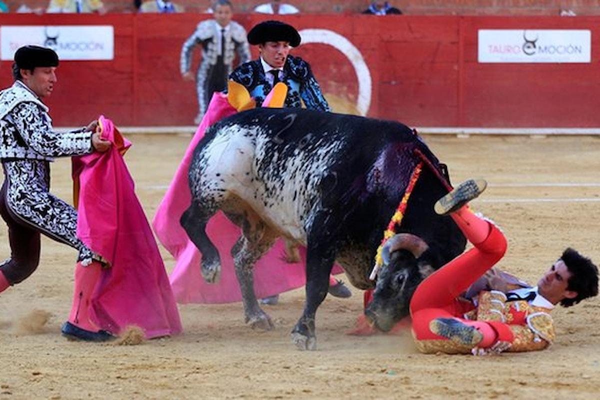 Spagna: ucciso torero in una corrida. Un morto a Valenza, feriti a Pamplona durante corse dei tori