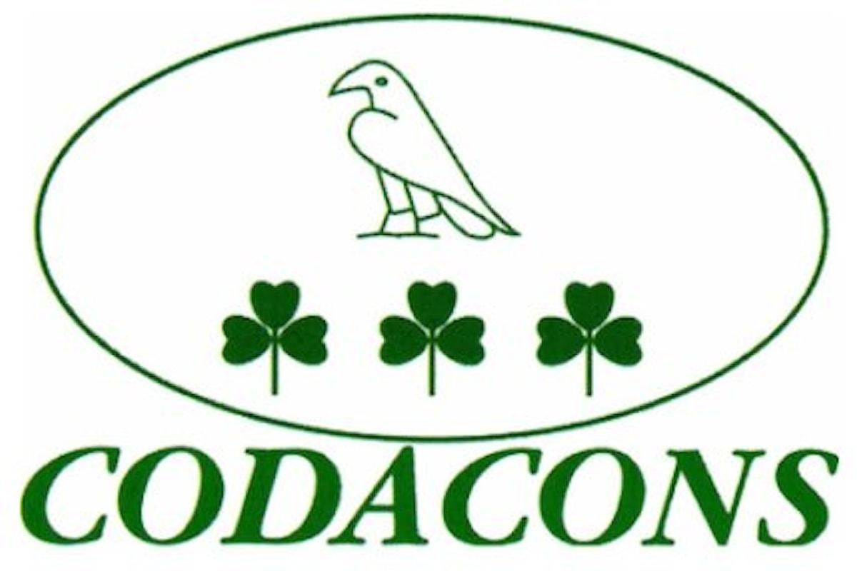 Il 12 gennaio Codacons organizza protesta davanti la sede di Consob a Roma
