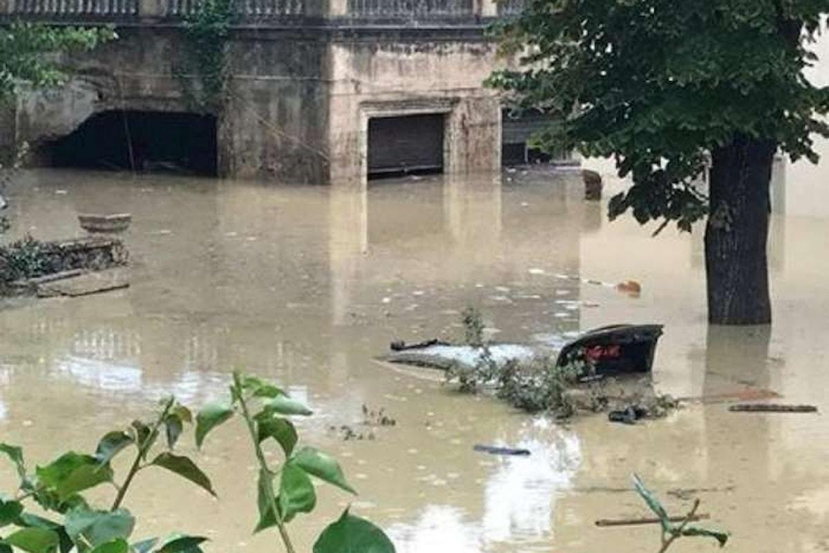 Anche la pioggia diventa politica a dispetto di danni e morti
