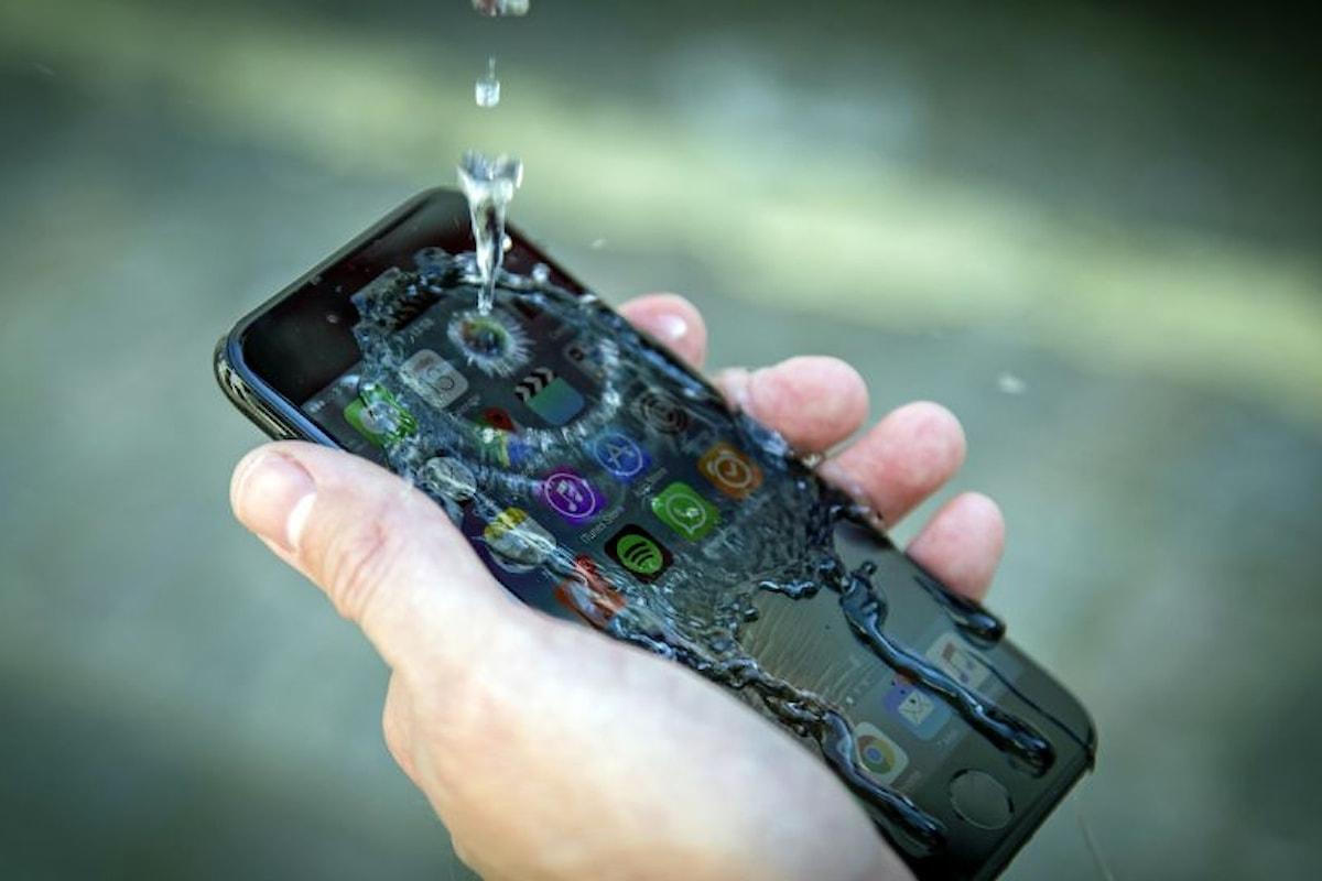 IPhone 7: Le vendite sono in netto calo!?   Surface Phone Italia