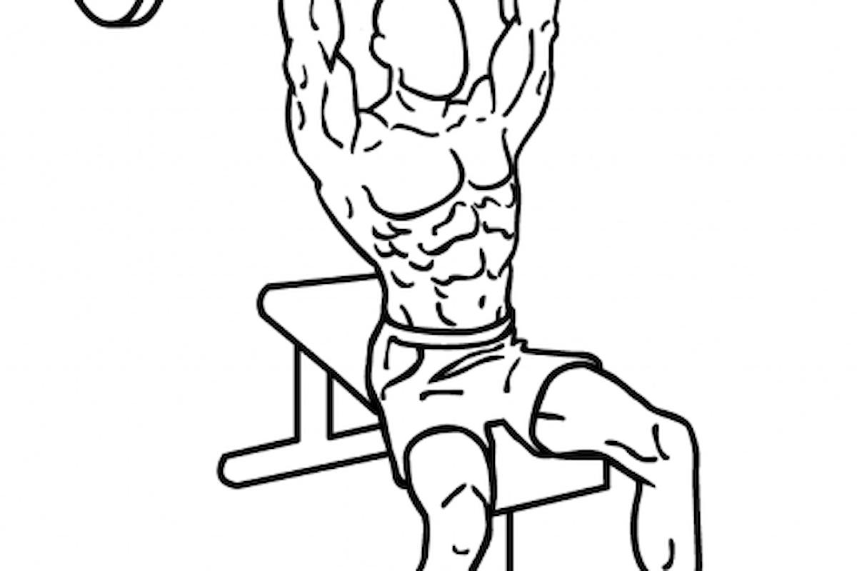 Allenare le spalle: gli esercizi principali
